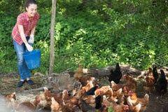 Giovane agricoltore femminile che dà alimentazione Fotografia Stock Libera da Diritti