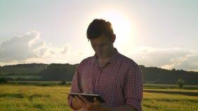 Giovane agricoltore sicuro in compressa della tenuta della camicia ed osservare in avanti il giacimento di grano, bella terra col video d archivio