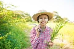 Giovane agricoltore tradizionale della femmina del Myanmar Immagini Stock