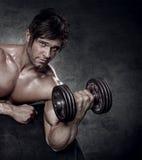 Giovane allenamento sexy muscolare dell'uomo in palestra Immagini Stock