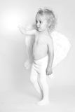 Giovane angelo Immagine Stock