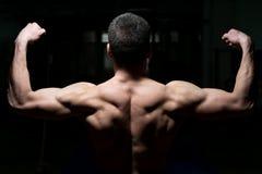 Giovane atleta maschio Flexing Back Muscles Fotografia Stock