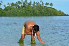 Giovane bagno polinesiano attraente ed esotico dell'uomo di Islander del cuoco fotografie stock
