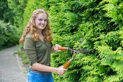 Giovane barriera olandese della potatura della donna con la cesoia per tagliare le siepi Immagine Stock