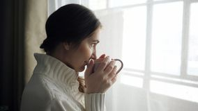 Giovane bella donna castana in tazza di caffè bevente del maglione vicino alla finestra archivi video