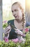 Giovane bella donna con una petunia della piantina della treccia in scatole in primavera fotografia stock libera da diritti