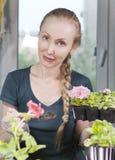 Giovane bella donna con una petunia della piantina della treccia in scatole in primavera fotografia stock