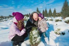 Giovane bella famiglia in vestiti luminosi che scelgono un albero di Natale, neve, stile di vita, vacanze invernali Immagine Stock