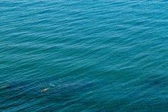 Giovane bella ragazza sola su un mare greco profondo blu-verde calmo fotografie stock libere da diritti