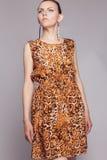 Giovane bella ragazza in vestito dal leopardo immagini stock