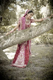Giovane bella sposa indù indiana che sta sotto l'albero Immagine Stock