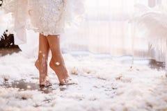 Giovane bella sposa nello stile di boho ed in piume bianche Fotografie Stock