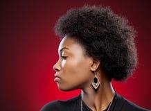 Giovane bellezza nera con l'acconciatura di afro fotografia stock libera da diritti