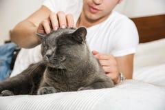Giovane bello che stringe a sé il suo Gray Cat Pet Fotografia Stock