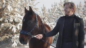 Giovane bello del ritratto che tiene le redini del cavallo che stanno sui precedenti dei pini innevati su un ranch del paese video d archivio