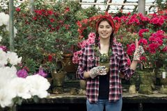 Giovane bello giardiniere sportivo con la fascia colta che tiene le piante a disposizione immagini stock