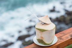 Giovane bevanda del rinfresco della noce di cocco fresca fotografia stock