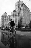 Giovane bicicletta di giro del ragazzo con il fondo del grattacielo Fotografia Stock