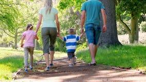 Giovane camminata della famiglia stock footage