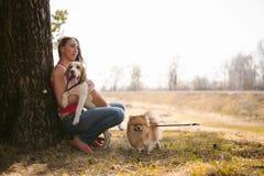 Giovane cane da lepre delle razze del cane di animale domestico che cammina nel parco all'aperto Fotografia Stock