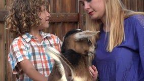 Giovane capra di coccole del ragazzo stock footage