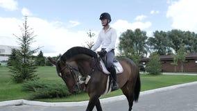 Giovane cavaliere che cammina sul cavallo stock footage