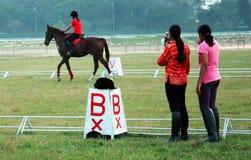 Giovane cavaliere del cavallo Fotografie Stock Libere da Diritti