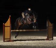 Giovane cavaliere femminile sul cavallo di baia che salta sopra la transenna sul equestria Immagine Stock