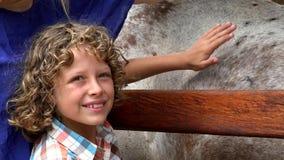 Giovane cavallo di coccole del ragazzo archivi video