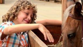 Giovane cavallo di coccole del ragazzo video d archivio