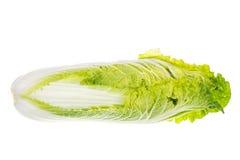 Giovane cavolo cinese verde fresco isolato su fondo bianco Fotografia Stock Libera da Diritti
