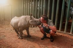 Giovane che bacia il bambino del rinoceronte fotografie stock libere da diritti