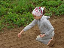 Giovane coltivatore Fotografia Stock Libera da Diritti