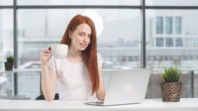 Giovane computer portatile funzionante sorridente della donna di affari in ufficio video d archivio