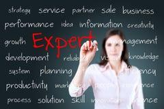 Giovane concetto dell'esperto in scrittura della donna di affari Immagine Stock Libera da Diritti