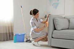 Giovane domestica che rimuove sporcizia dal sofà fotografia stock