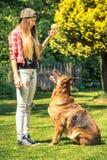 Giovane donna attraente e cane da pastore tedesco immagini stock
