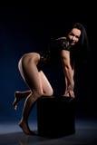 Giovane donna in calzamaglia nere a quattro zampe immagine stock