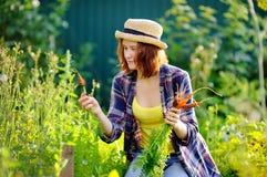 Giovane donna in cappello di paglia durante il tempo di raccolto Fotografia Stock
