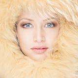 Giovane donna in cappello di pelliccia Fotografie Stock