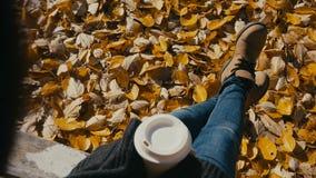 Giovane donna che beve caffè caldo nel parco di autunno video d archivio