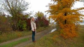 Giovane donna che cammina alla natura in autunno stock footage