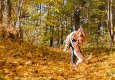 Giovane donna che cammina con un cane da lepre nel parco di autunno immagine stock libera da diritti