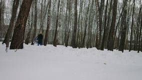 Giovane donna che cammina con una carrozzina nel parco di inverno stock footage