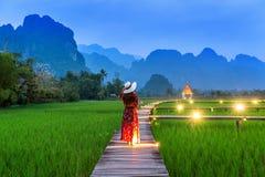 Giovane donna che cammina sul percorso di legno con il giacimento verde del riso in Vang Vieng, Laos immagine stock