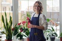 Giovane donna che coltiva le piante domestiche Immagine Stock Libera da Diritti