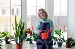 Giovane donna che coltiva le piante domestiche Immagine Stock