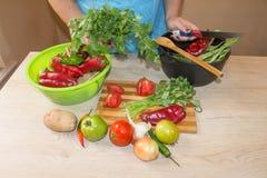 Giovane donna che cucina nella cucina Immagine potata delle verdure di taglio della ragazza per alimento Il cuoco unico taglia le Immagini Stock