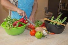 Giovane donna che cucina nella cucina Immagine potata delle verdure di taglio della ragazza per alimento Il cuoco unico taglia le Fotografia Stock
