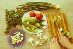 Giovane donna che cucina pasto sano nella cucina Cottura sana Fotografie Stock Libere da Diritti